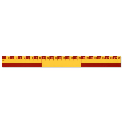 30cm Recycled Plastic Infant Ruler