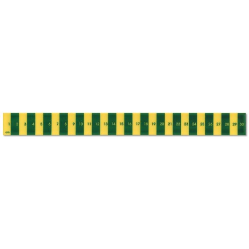 30cm  Recycled Plastic Early Learning Ruler