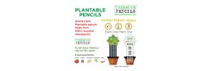 How choosing the right pencil could help the environment